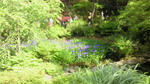 image/2010-05-09T14:00:382