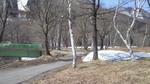 image/2009-04-12T18:11:513
